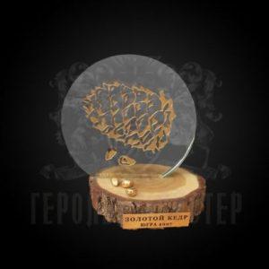 Фото (Русский) Сувенир «Золотой Кедр 2007»