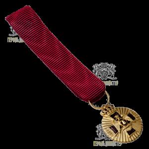Фото Миниатюра нагрудной звезды «Ордена Орла Грузии и нетленной плащаницы»