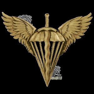 Фото Беретний знак Десантно-Штурмовые войска