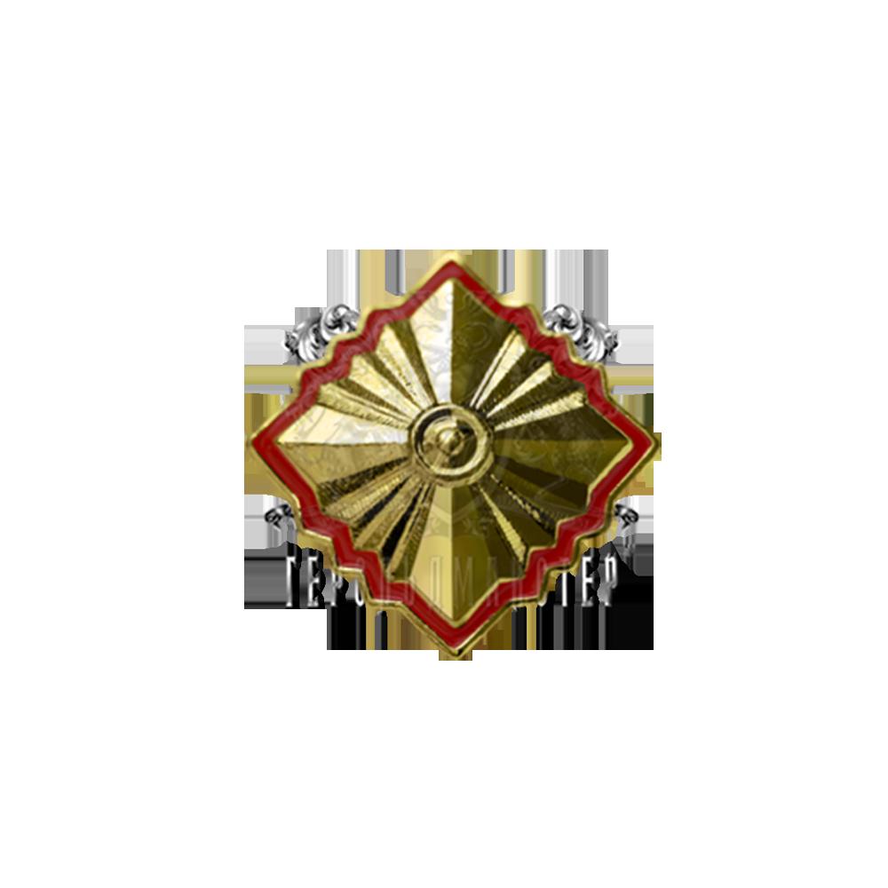 Фото Знак различия «Звезда» (на погон парадной формы одежды)